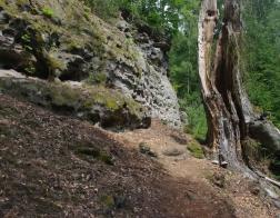Máchovo jezero a okolí - výstup na Borný (446 m. n. m.)