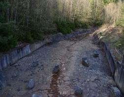 CHKO Brdy - rybník Pod Valdekem