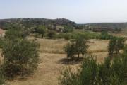 Panorama nedaleko od Maslenici