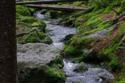 Šumava - one of the many streams