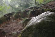 Hruboskalsko - záběr z úkrytu před deštěm :-)