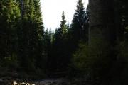 Protržená přehrada - Bílá Desná