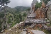 Korsika - cesta k Lac d'Oriente