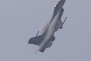 NATO days 2014 - dánská F-16