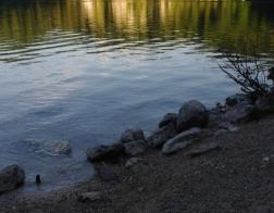 Ráno u jezera Alpsee