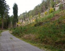 Dlouhý hřeben - po cestě do Jestřebí