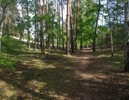 Turistická cesta Písty - pískovna Sadská