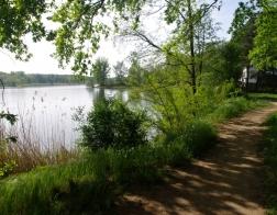 Pískovna Sadská