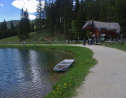"Rakousko - jezero Teichalmsee, ""trojská"" kráva"