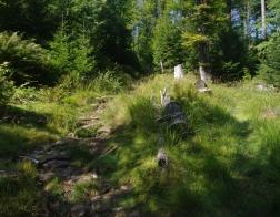 Šumava - výstup na Třístoličník