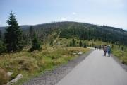 Šumava - cesta na Plechý