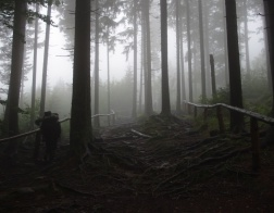 Mlžná cesta na vrchol Špičáku