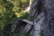 Okolí hory Traunstein