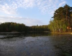 Jívový rybník