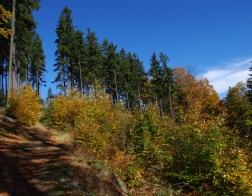 Jizerské hory - podzimní barvy