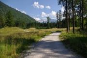 Rakousko - Cumberland Wildpark Grunau
