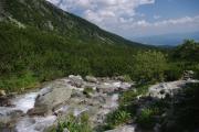Bystřina vedoucí od vodopádu Skok