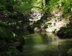 Tapeta na plochu České švýcarsko