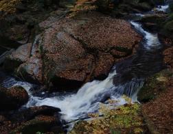 Tapeta na plochu Jizerské hory